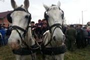 Pokladno jahanje u Oprisavcima okupilo više od 60 konjanika