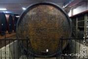 Erdutski vinogradi: Osim novih tržišta u Kini i EU, najavljene investicije i u turizam