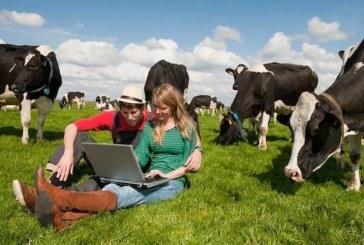 Sljedeći tjedan kreće isplata 2. dijela poticaja poljoprivrednicima