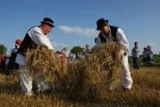 ŽETVA MOŽE POČETI: 15. Oriovačke žetvene svečanosti oživjele drevne običaje žetve u Slavoniji
