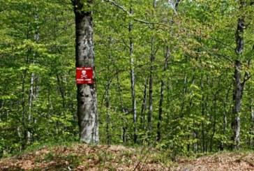 Potpisan 40 milijuna kuna vrijedan sporazum o razminiranju šumskog zemljišta