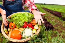 Hrvatska troši 23 eura za ekološke proizvode po stanovniku