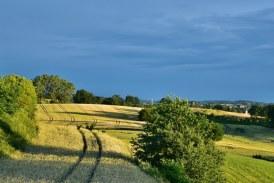 Započinje isplata izravne potpore poljoprivrednicima