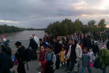 Slovenija počela propuštati migrante